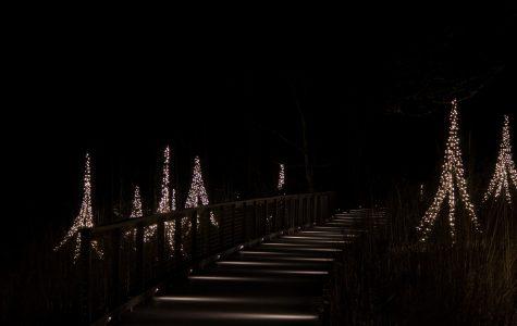 Longwood Gardens – A Walk in the Dark