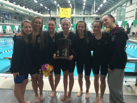 Swim/Dive places second and seventh in state meet