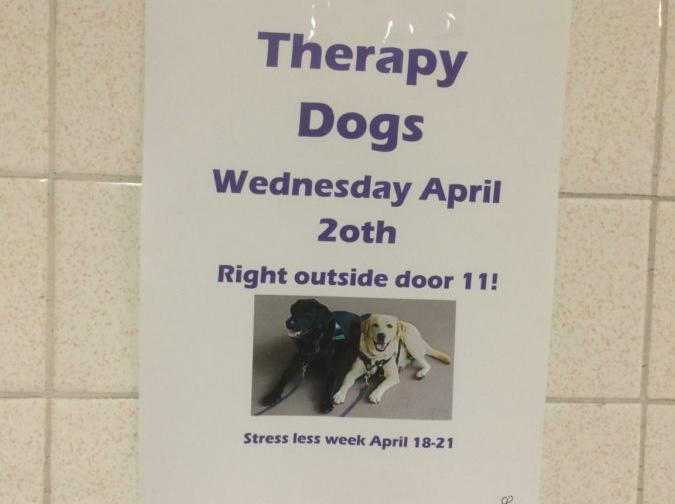 Whats in store at Oakton for Mental Health Awareness Week