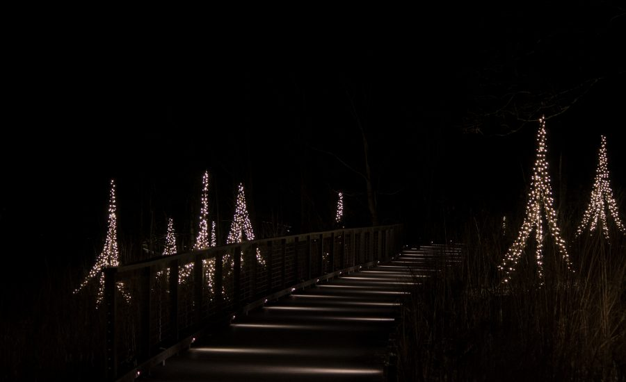 Longwood Gardens - A Walk in the Dark