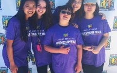 A Walk for Friendship and Inclusion