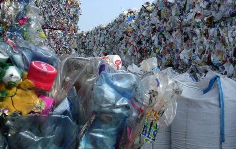 How to Live Zero Waste