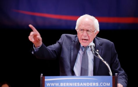 This is a picture of Vermont senator Bernie Sanders during his campaign in the 2016 elections. He will be running again for the 2020 elections. Credit to Flickr.