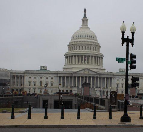 Seniors Take On Capitol Hill
